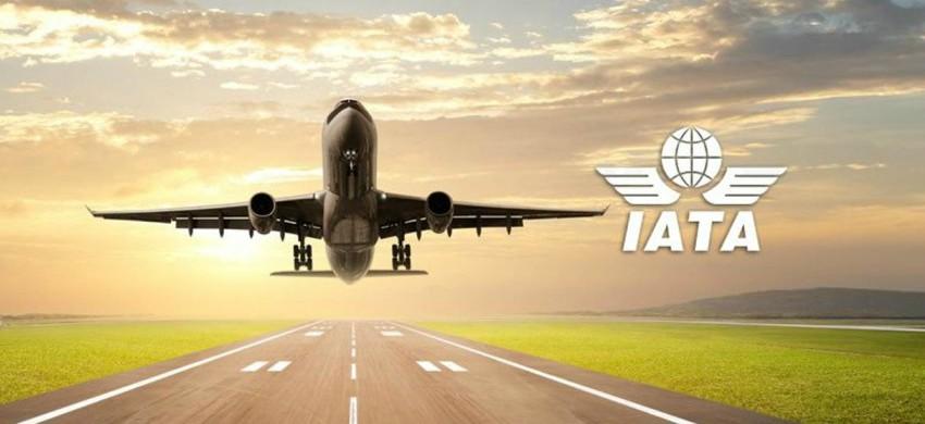 Codici IATA e ICAO, cosa sono e a cosa servono